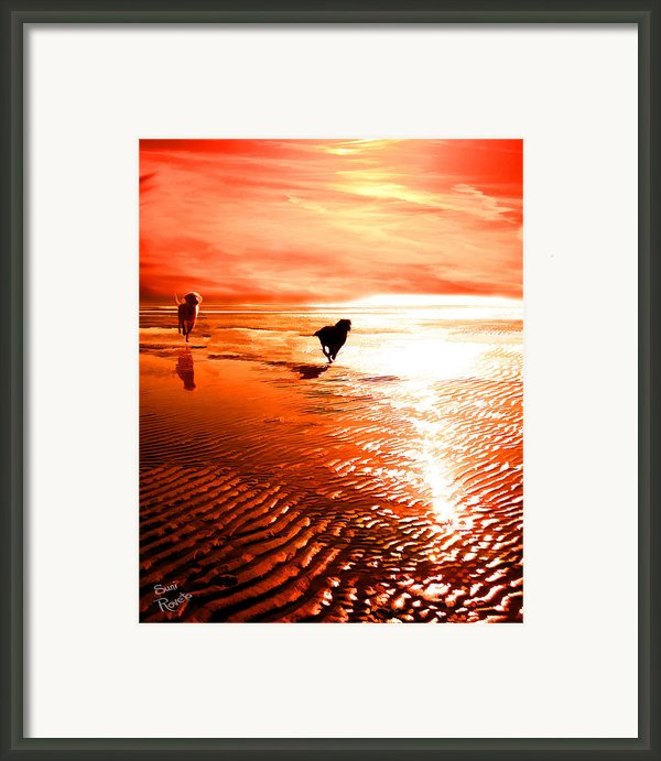 Catch Me If You Can Framed Print By Suni Roveto