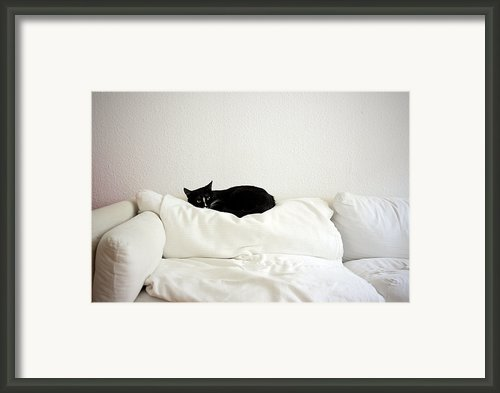 Catheaven Framed Print By Licensed Material