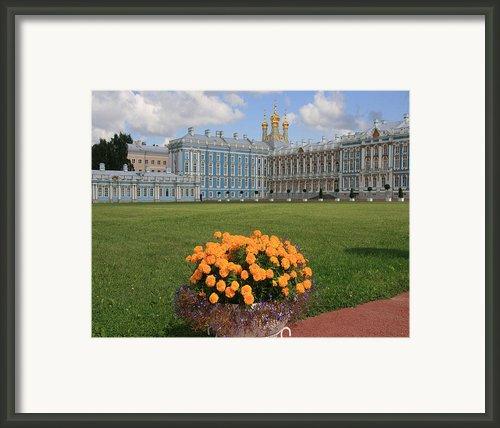 Catherine Palace In Russia Framed Print By Sharon Kalniz