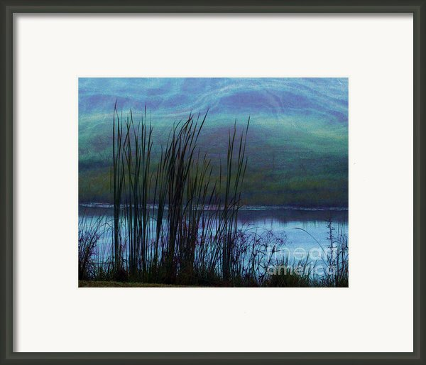 Cattails In Mist Framed Print By Judi Bagwell