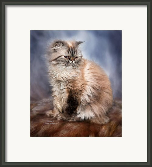 Cattitude 2 Framed Print By Carol Cavalaris