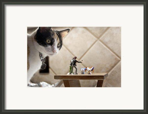 Catzilla Framed Print By Melany Sarafis