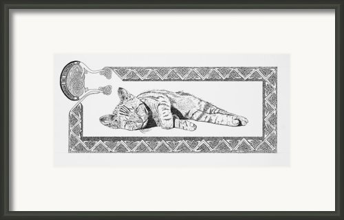 Celtic Kitten Framed Print By Malc Mchugh
