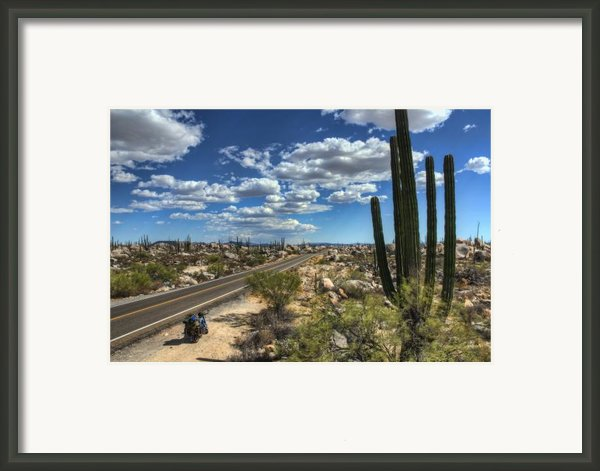 Center Of The Baja Framed Print By Rich Beer