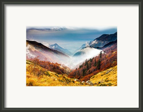 Central Balkan National Park Framed Print By Evgeni Dinev