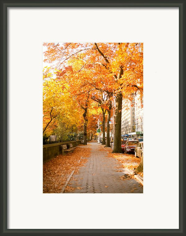 Central Park West Framed Print By Ariane Moshayedi