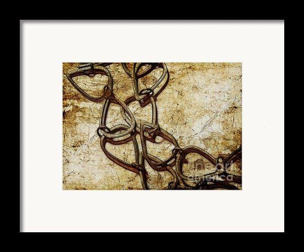 Chain Links Framed Print By Judi Bagwell