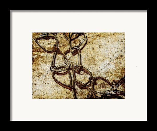 Chain Links Framed Print By Judi Bagwell