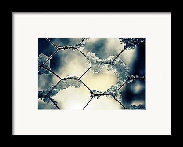 Chainlink Fence Framed Print By Joana Kruse