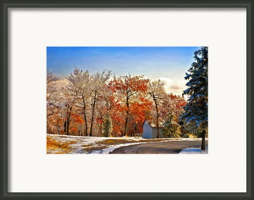Change Of Seasons Framed Print By Lois Bryan