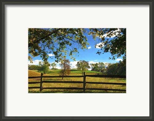 Changing Seasons Framed Print By Bill Cannon