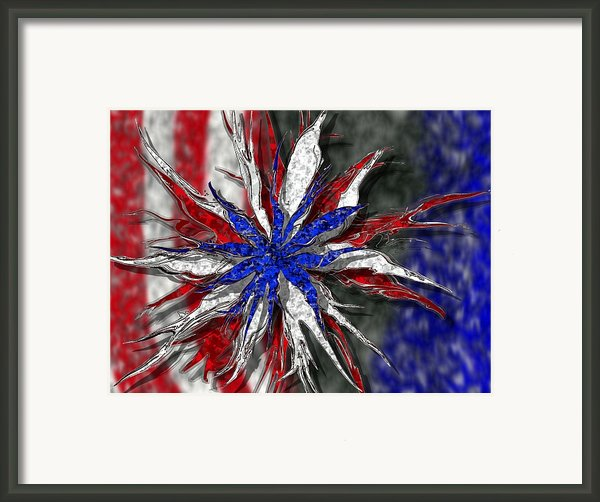 Chaotic Star Project - Take 3 Framed Print By Scott Hovind