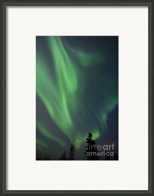 Chasing Lights Ii Natural Framed Print By Priska Wettstein
