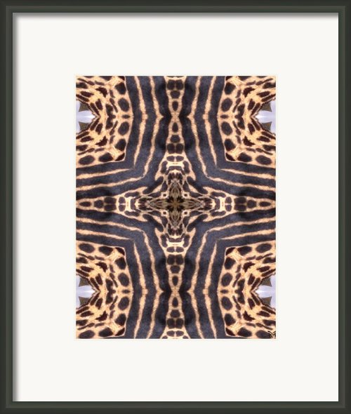 Cheetah Cross Framed Print By Maria Watt