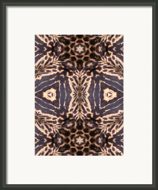 Cheetah Print Framed Print By Maria Watt