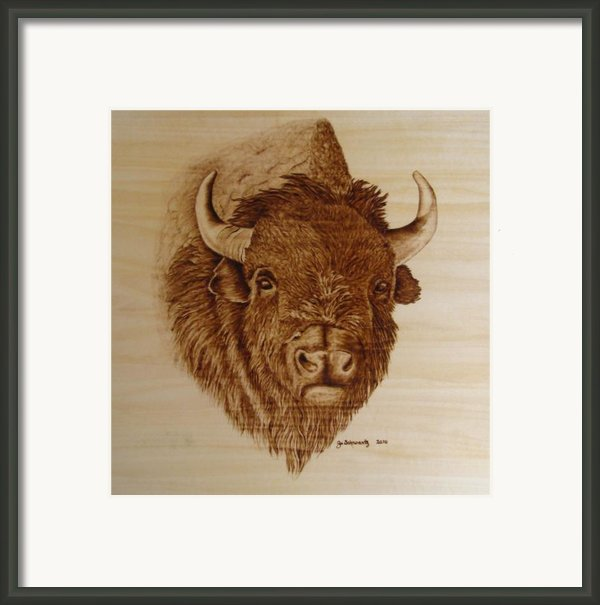 Chief Framed Print By Jo Schwartz