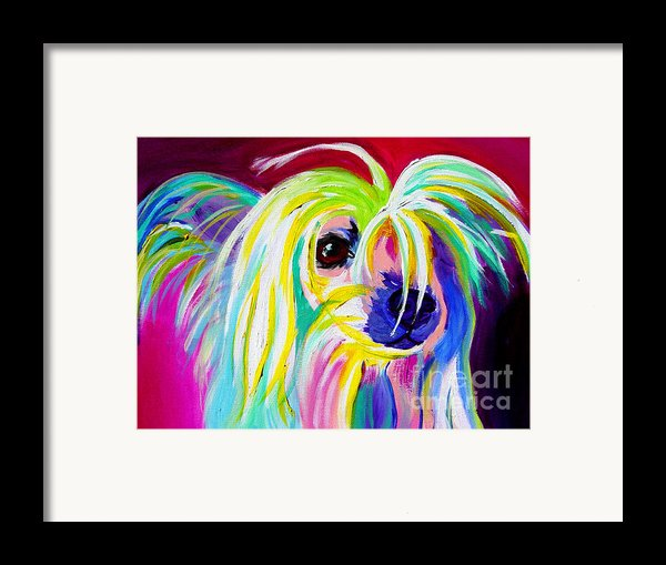 Chinese Crested - Fancy Pants Framed Print By Alicia Vannoy Call