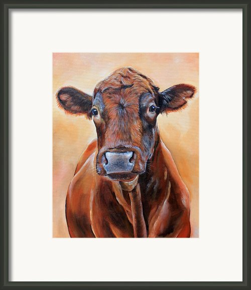 Cinnabar    Framed Print By Laura Carey