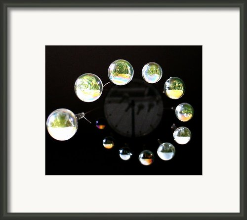 Circles Of Live Framed Print By Sandy Poore