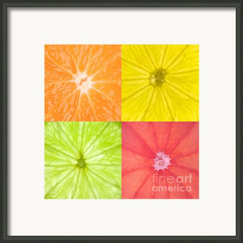 Citrus Fruits Framed Print By Richard Thomas