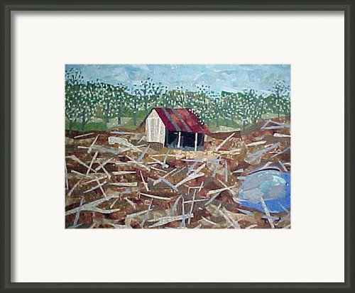Clear Cut Framed Print By Charlene White