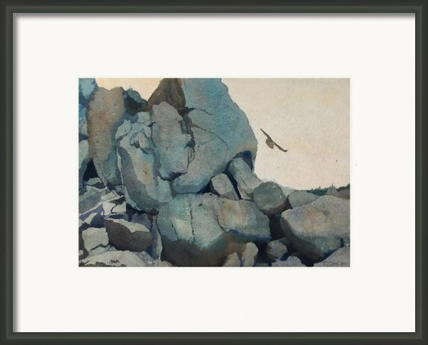 Cleft For Me Framed Print By Elizabeth Carr