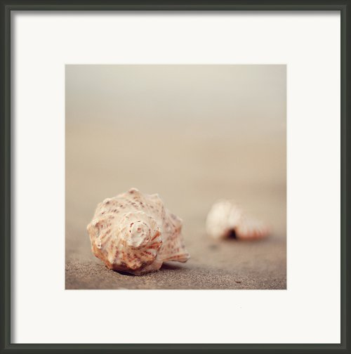 Close Up Of Shells On Beach Framed Print By Copyright© Marianna Di Ferdinando