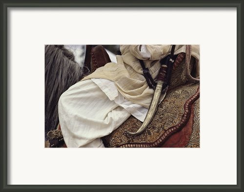 Close View Of A Scimitar On A Horseback Framed Print By Steve Winter