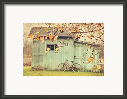 Closeup Of Leaves With Old Barn In Background Framed Print By Sandra Cunningham