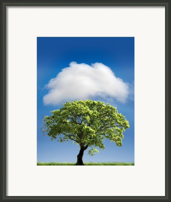 Cloud Cover Framed Print By Mal Bray