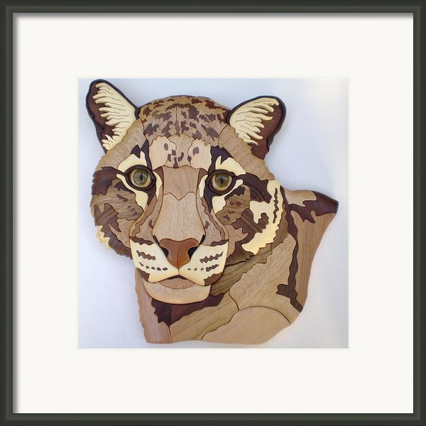 Clouded Leopard Framed Print By Annja Starrett