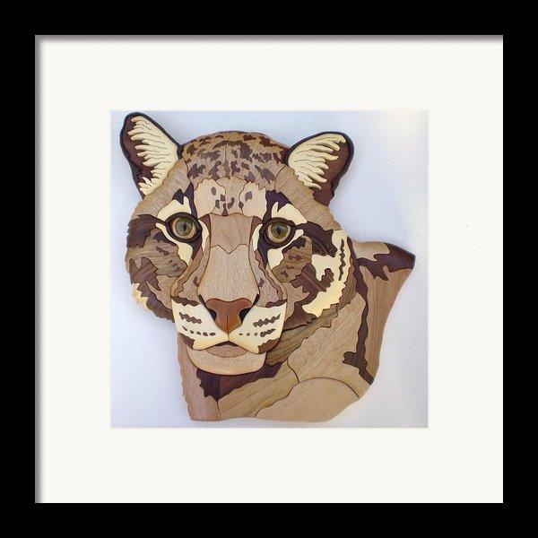 Clouded Leopard Framed Print By Annja Starrett
