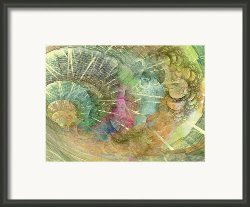 Coastal Cosine Gem  Framed Print By Betsy A Cutler East Coast Barrier Islands