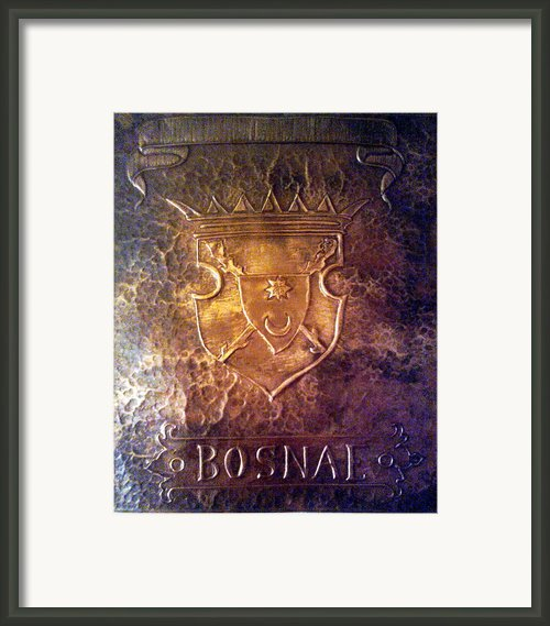 Coat Of Arms Bosnia  Framed Print By Mak Art
