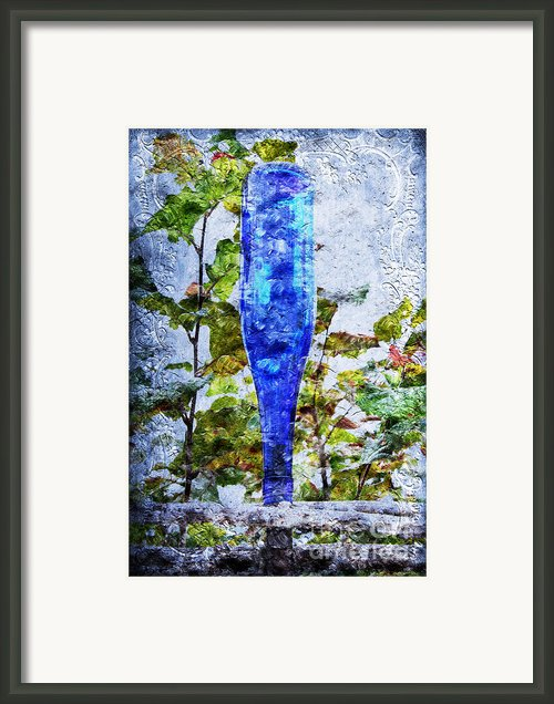 Cobalt Blue Bottle Triptych 1 Of 3 Framed Print By Andee Photography