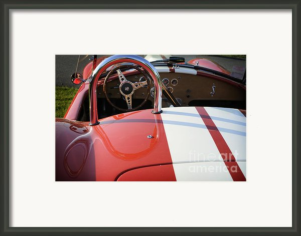 Cobra Framed Print By Luke Moore