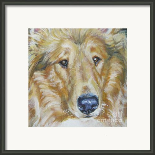 Collie Close Up Framed Print By Lee Ann Shepard