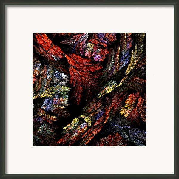 Color Harmony Framed Print By Oni H