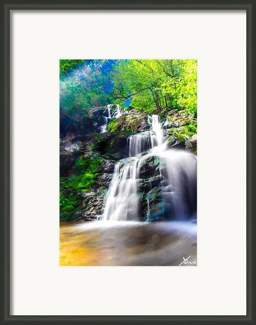 Colorful Stream Framed Print By Shane York