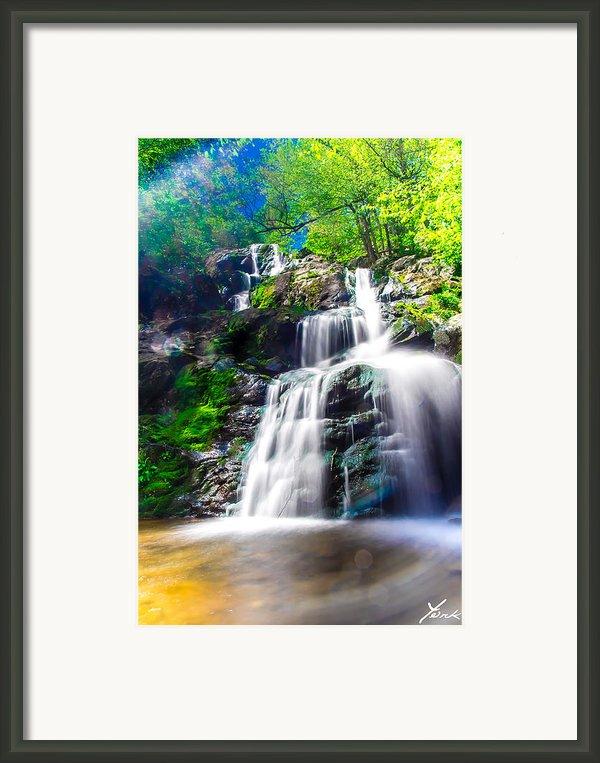 Colorful Stream Framed Print By Shane York