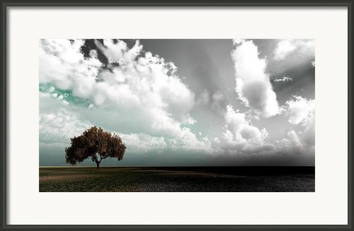 Colour Life Framed Print By Peter Oconor