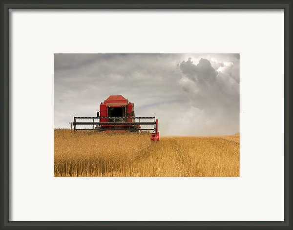 Combine Harvester, North Yorkshire Framed Print By John Short