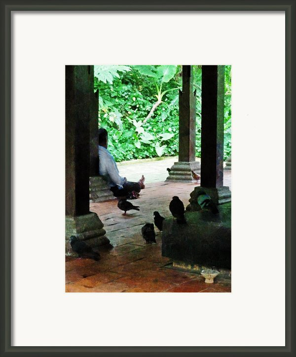 Communing With The Birds Framed Print By Steve Taylor