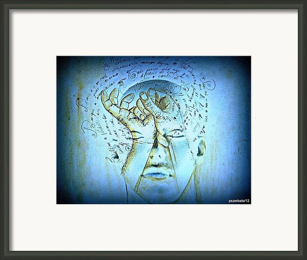 Comprehension Framed Print By Paulo Zerbato