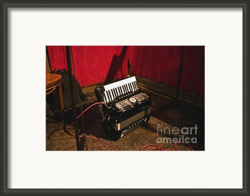 Concertina On The Floor Framed Print By Eddy Joaquim