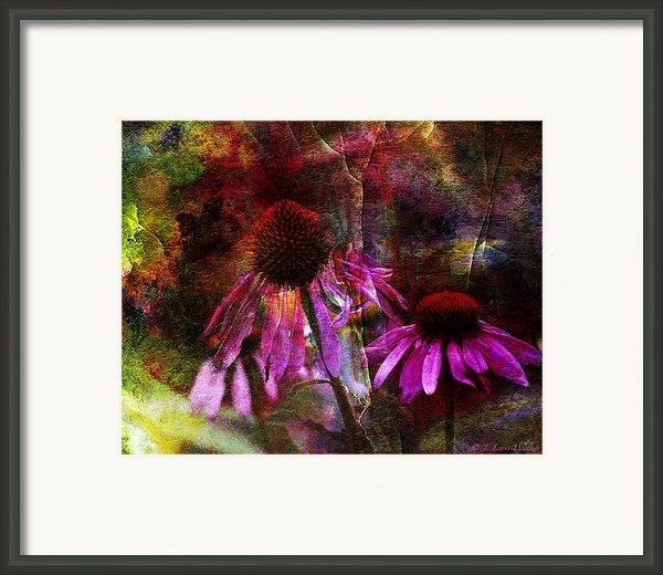 Cone Flower Beauties Framed Print By J Larry Walker