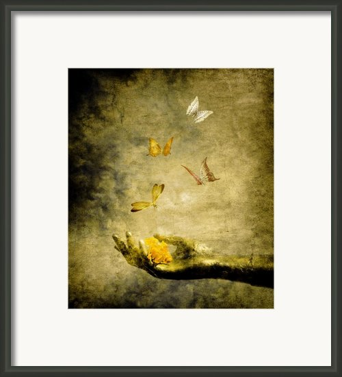 Connect Framed Print By Photodream Art