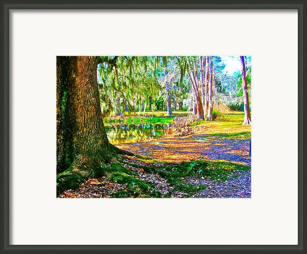 Cool Feeling Framed Print By Frank Santagata