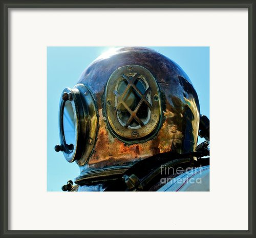 Copper Head Framed Print By Rene Triay Photography