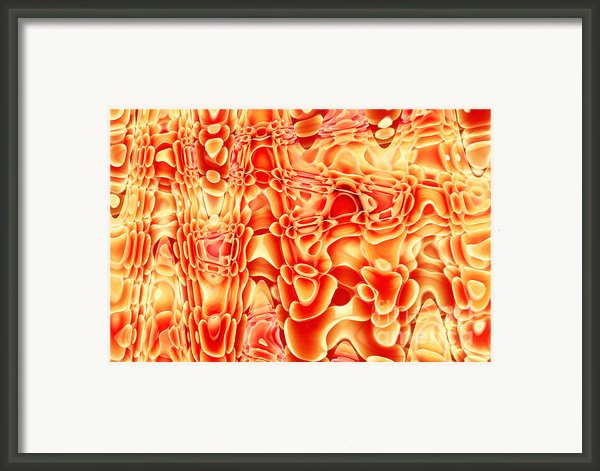 Coral Reef Framed Print By Lj Lambert